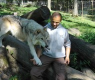 wolf-science-center