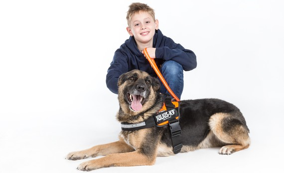 Juki and Julius-K9® - Leading The Way In Harnesses