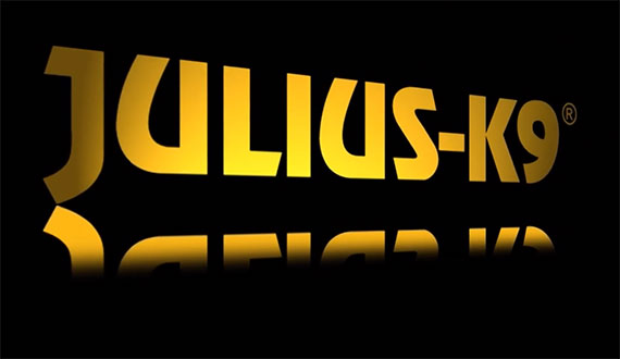 Julius-K9® Company retrospective